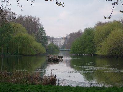 londyn017.jpg